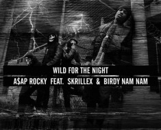 wild-for-the-night-cover