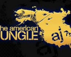 American Jungle EDM Film