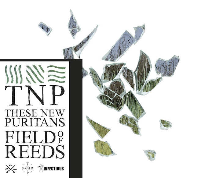 these new puritans fields of reeds