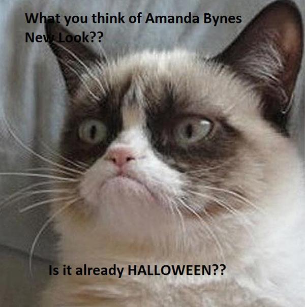 Grumpy Cat Amanda Bynes