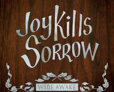 Joyful sorrow wide awake