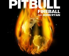 Pitbull FIreball