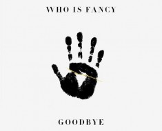 Who Is Fancy Goodbye Album Cover