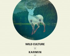 Wild Culture vs Karmin Sugar-1500x1500