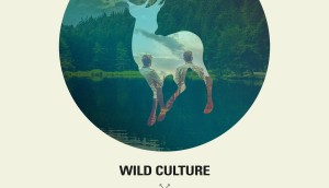 Wild Culture vs Karmin Sugar-1500x1500