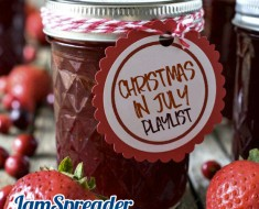 Tropical Christmas In July Playlist